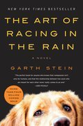 Cover image for Art of Racing in the Rain